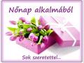 nonapra7_origi-alli